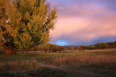 My friends farm in Colorado