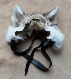 Wearable coyote taxidermy ears by Lupa. Available at https://www.etsy.com/listing/220269164/coyote-ears-headdress-real-eco-friendly