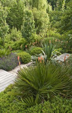 Love evergreen gardens