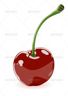 Vector illustration of a cherry