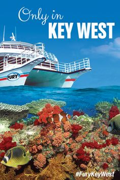 We love Key West! #FuryKeyWest
