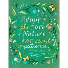Adopt the pace of nature; her secret is patience. - Ralph Waldo Emerson, artwork by Katie Daisy at thewheatfield on Etsy Ralph Waldo Emerson, Life Quotes Love, Me Quotes, Pretty Quotes, Daisy Quotes, Peace Quotes, Citation Nature, Daisy Art, Acrylic Artwork