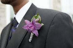 Purple Singapore orchid