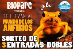 Haz click en la imagen y participa en el concurso del Bioparc, 2 entradas al parque pueden ser tuyas