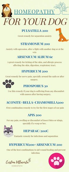 Good Health Tips, Health And Fitness Tips, Health Advice, Healthy Tips, Health Site, Cat Health, Homeopathy Medicine, Homeopathic Remedies, Acupuncture