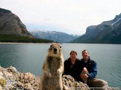 Best photo bomb ever!