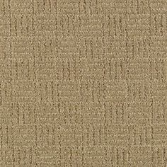 Defined Design style carpet in Quarry Beige color, available wide, constructed with Mohawk EverStrand BCF/Triexta Blend carpet fiber. Plush Carpet, Diy Carpet, Modern Carpet, Carpet Ideas, Mohawk Carpet, Carpet Stores, Mohawk Flooring, Hall Carpet, Cheap Carpet Runners