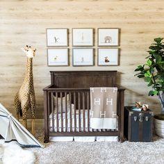 New baby nursery safari Ideas Safari Theme Nursery, Baby Boy Nursery Themes, Baby Boy Nurseries, Baby Room Decor, Nursery Decor, Nursery Boy, Project Nursery, Animal Nursery, Nursery Ideas