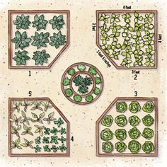Vegetable Garden Design Layout raised bed garden designs and layouts - many examples | gardening