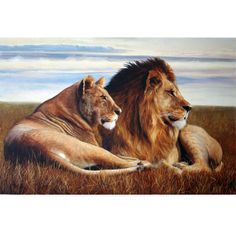 Brown Lion Hand Painted Canvas Oil Painting
