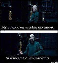 Harry Potter Pictures, Harry Potter Tumblr, Harry Potter Anime, Harry Potter Love, Harry Potter Fandom, Harry Potter Memes, Funny Photos, Funny Images, Savage Quotes