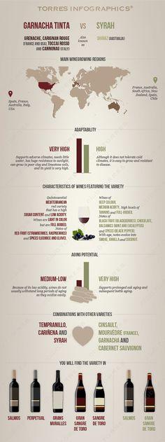 Red Wine Grape Variety: Garnacha vs. Syrah | Club Torres #Comparison#