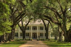 My dream house is a plantation house with huge oak trees along the drive way Southern Homes, Southern Style, Southern Charm, Southern Nights, Southern Gothic, Country Homes, Simply Southern, Beautiful Homes, Beautiful Places
