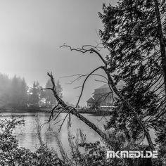 Markus Medinger Picture of the Day | Bild des Tages 20.10.2017 | www.mkmedi.de #mkmedi  Mummelsee im Schwarzwald  #schwarzwald #badenwuerttemberg #germany #deutschland  #schwarzweiss #blackwhite  #instagood #photography #photo #art #photographer #exposure #composition #focus #capture  #365picture #365DailyPicture #pictureoftheday #bilddestages #landscape  @badenwuerttemberg @visitbawu  @wirzeigens @baden.wuerttemberg