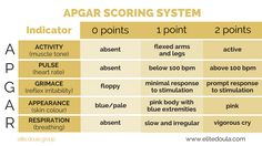 What is the APGAR Scoring System?