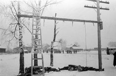 Volokolamsk hung partisans just cut down as the Russian military liberates the villag Back In The Ussr, World War, Wwii, Military, Gallery, Revolution, Germany, October, World War Ii