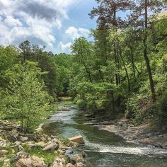 There's nothing like taking a hike along the Snake Creek Gorge at Historic Banning Mills. There is so much history and beauty to be found. Be sure to check out our article on this amazing place. @BanningMills