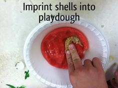 Making fossils with kids! A fun science lesson! With step by step instructions! Soaring Through Second Grade