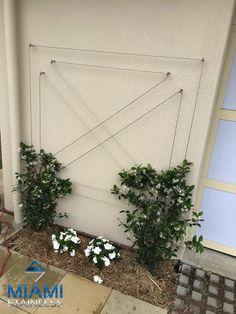 DIY Green Wall Design