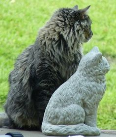 There's a cat of this statue!