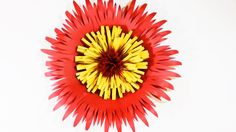 Giant Paper Flower Tutorial (Under 60 seconds!) The best ever paper flower tutorial! Check this out.