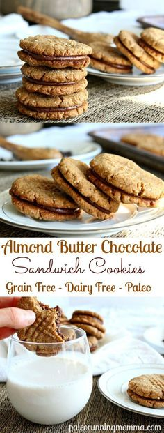 Amazingly Chewy and delicious Paleo Almond Butter Chocolate Sandwich Cookies that are grain free, gluten free, dairy free. This must-try recipe is the perfect healthy cookie to impress! You won't beli (Almond Butter Nutrition) Patisserie Sans Gluten, Dessert Sans Gluten, Gluten Free Sweets, Paleo Dessert, Gluten Free Baking, Low Carb Desserts, Healthy Sweets, Dairy Free Recipes, Vegan Desserts