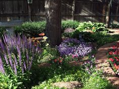 drought tolerant plants Just Another Hang Up