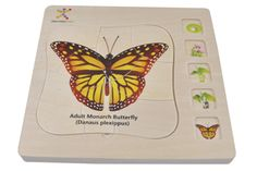 Monarch Butterfly Puzzle - Discovery Toys This is a DT exclusive product! I love the several layers of this wooden puzzle that shows the different stages of the butterfly! This is a great item for an Easter Basket! Discovery Toys, Little Learners, Learning Toys, Wooden Puzzles, Monarch Butterfly, Easter Baskets, Educational Toys, New Product, Illustration
