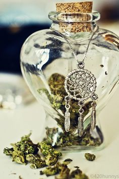 Buy Afghan seeds here! Afghan is one of the oldest Indica strains, and is a robust, compact cannabis type to grow, with a spicy flavour and relaxing effect. Seed Shop, Stash Jars, Pipes And Bongs, Weed Pipes, Puff And Pass, Weed Seeds, Stoner Girl, Smoking Weed, Ganja