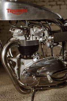 """Triumph """"Trackmaster"""" by Atom Bomb Triumph Motorbikes, Triumph Chopper, Triumph Bikes, Indian Motorcycles, British Motorcycles, Triumph Motorcycles, Vintage Motorcycles, Flat Track Motorcycle, Honda Motorcycles"""