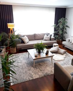 Living Room, Home Plant, Carpet, Floor Lamp, Backdrop Curta Center Table, Carpet Flooring, Decoration Table, Luxury Apartments, Pallet Ideas, Floor Lamp, Home Furnishings, Home Furniture, Ankara