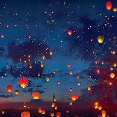 Floating Lanterns, Sky Lanterns, Set Wallpaper, Animal Wallpaper, Dreams Do Come True, Video Background, Night Skies, Cute Wallpapers, Aesthetic Wallpapers