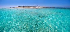 Espalmador ist eine Trauminsel auf Formentera, wie man sie so im Mittelmeer kein zweites Mal finden wird.