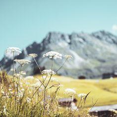 Ein Kraftort ist ein Ort, an dem seltsame Kräfte zu wirken scheinen. Heilende und wohltuende Energien sind es, die uns in Oberlech begleiten. Unsere Natur ist ein perfekter Energielieferant für neue Tätigkeiten. 〽️ Der Urlaub am Energieberg soll entspannt und ohne Stress ablaufen. ✨ #hotelgoldenerberg #metime #kräfte Berg, Stress, Mountains, Nature, Travel, Places, Vacation, Naturaleza, Viajes