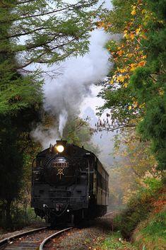 只見線「SL只見線紅葉号」 蒸気機関車C11_325