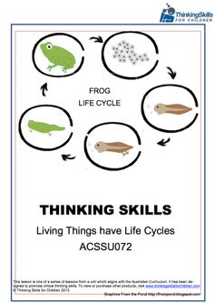 Teacher Resources Yr4 Science The Life Cycle Of The Frog