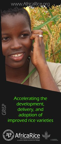 Global Rice Science Partnership (GRiSP) Themes Theme 2: Accelerating the development, delivery, and adoption of improved rice varieties Photo, Poster Design : R.Raman, AfricaRice
