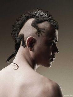 los cortes de pelo más curiosos - Lagarto