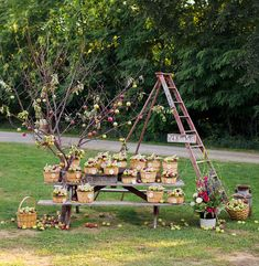 Amy Smart + Carter Oosterhouse's Eco-Friendly Wedding Maybe find a ladder for decor - plus baskets or crates for Apples - Apples might as well be the favor as well as decor! Farm Wedding, Garden Wedding, Rustic Wedding, Wedding Ideas, Wedding Favors, Wedding Decor, Wedding Receptions, Wedding Blog, Diy Wedding