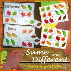 Activitate de sortare a frunzelor pentru lunile de toamnă. Fall Leaves Activity - Same or Different Sorting for Autism andSpecial Needs, Speech Therapy, ABA, TEACCH, OT. Sorting Activities, Autumn Activities, Classroom Activities, Autism Resources, Teaching Resources, Teaching Ideas, Primary Resources, Teaching Kindergarten, Kindergarten Centers