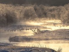 Crane Games - Morning Mist