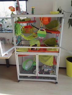 My aluminum rat cage :) (Critter nation look-a-like) Chinchilla Cage, Ferret Cage, Hamster Cages, Small Animal Rescue, Small Animal Cage, Pet Rat Cages, Pet Cage, Rata Dumbo, Types Of Rats
