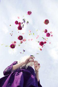 Flower Bomb 2 by Jim Jam Girl Photography, Creative Photography, Landscape Photography, Fashion Photography, Photography Flowers, Beautiful Flowers, Beautiful Pictures, Photography Challenge, Flower Fashion