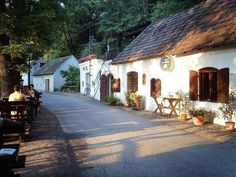 Cellar alley and Wine taverne, Lower Austria