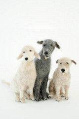 Domenica More Gordon's Felted Dogs -8 (...love Maegan) Tags: art dogs felting artists cutestuff dogart felteddogs manshopsglobe domenicamoregordonsfelteddogs