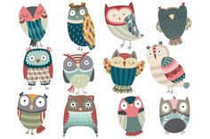 Cute Owl Set Vector & PNG Pack by Kenna Sato Designs on Creative Market