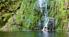 The Best Waterfall Rockpool Hikes in The Cape Waterfall Hikes, River Trail, Table Mountain, Rock Pools, Best Hikes, Nature Reserve, Hiking Trails, Dog Friends, National Parks
