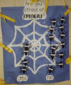 Spider Survey