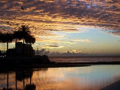 """""""Sunset""""  Gabi Gegenheimer (Chile Summer 2)  Vina del Mar, Chile"""