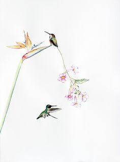 Amy Ross, 'Bird Of Paradise 6,' 2015, Kopeikin Gallery